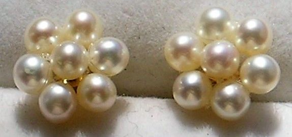 Perle Øreringe i 14 Karat Guld